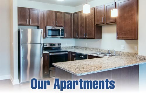 Our Apartments For Rent